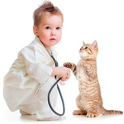 Veterinario / productos